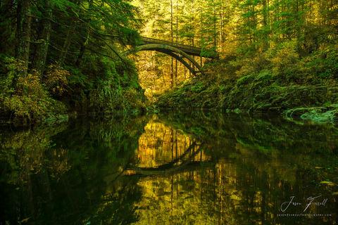 moon bridge, reflection, x o, garden