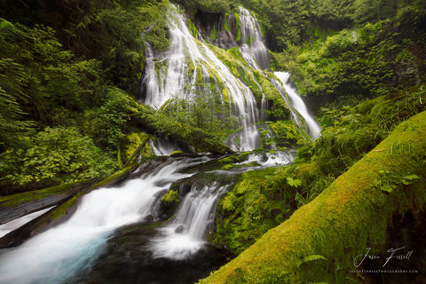 pathers beauty, Gifford Pinchot National Forest, Washington, creek, waterfall