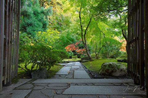 wander, portland japanese garden, oregon, plants, stone