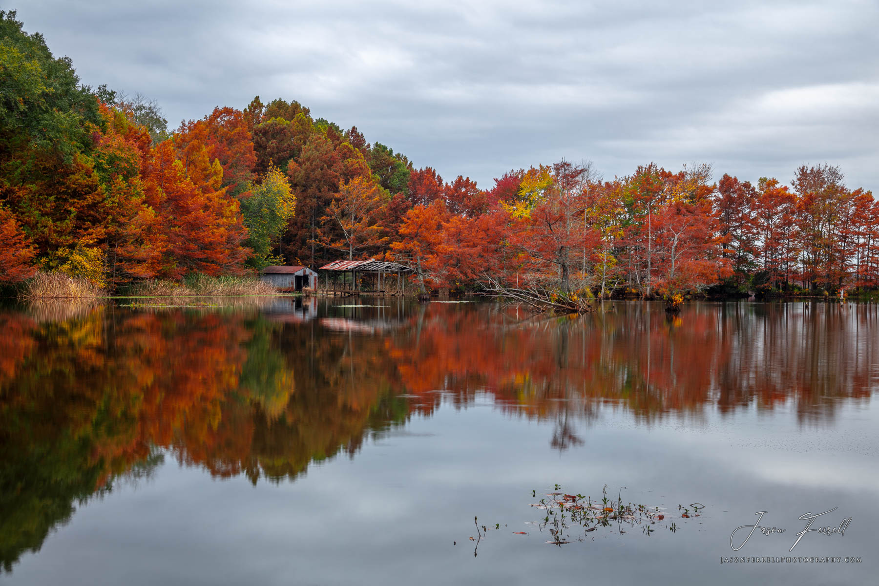 rusk county, texas, abandoned beauty, autumn, colors, old boat dock, reflected, bald cypress trees, lake, photo
