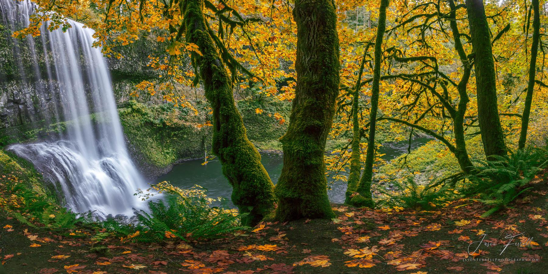 silver falls state park, oregon, autumn dream, waterfall, photo