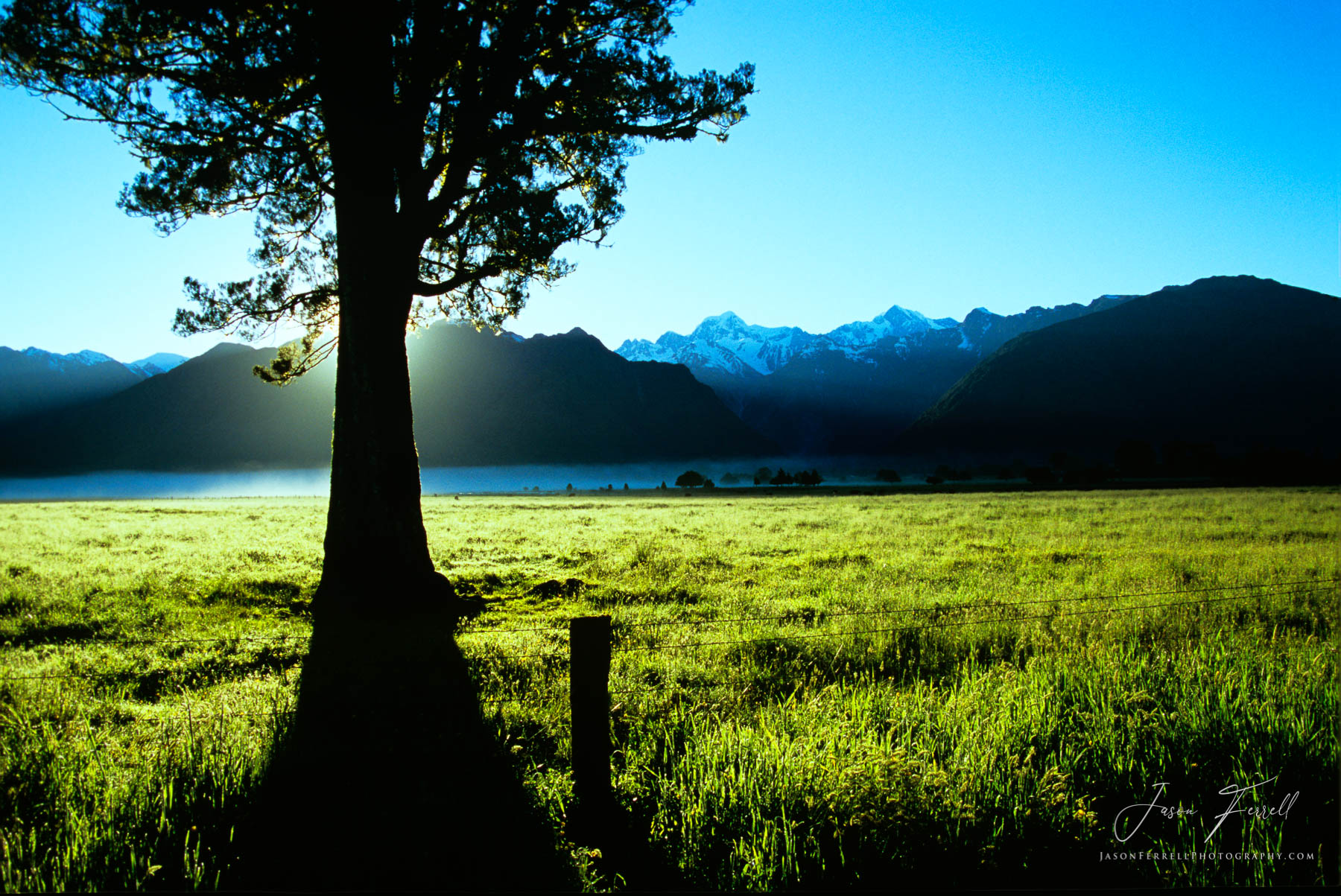 meadow and mountains, south island, new zealand, epic landscape, mount tasman, mount cook, snow, green, sun, light, photo