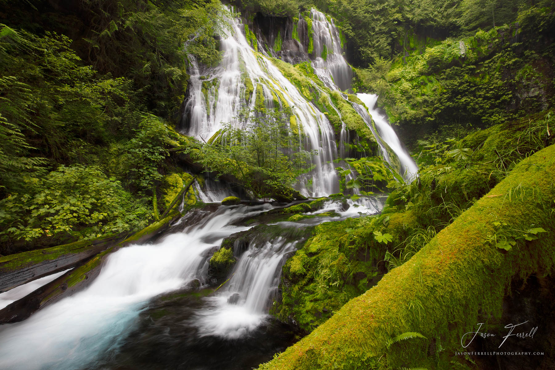 pathers beauty, Gifford Pinchot National Forest, Washington, creek, waterfall, photo