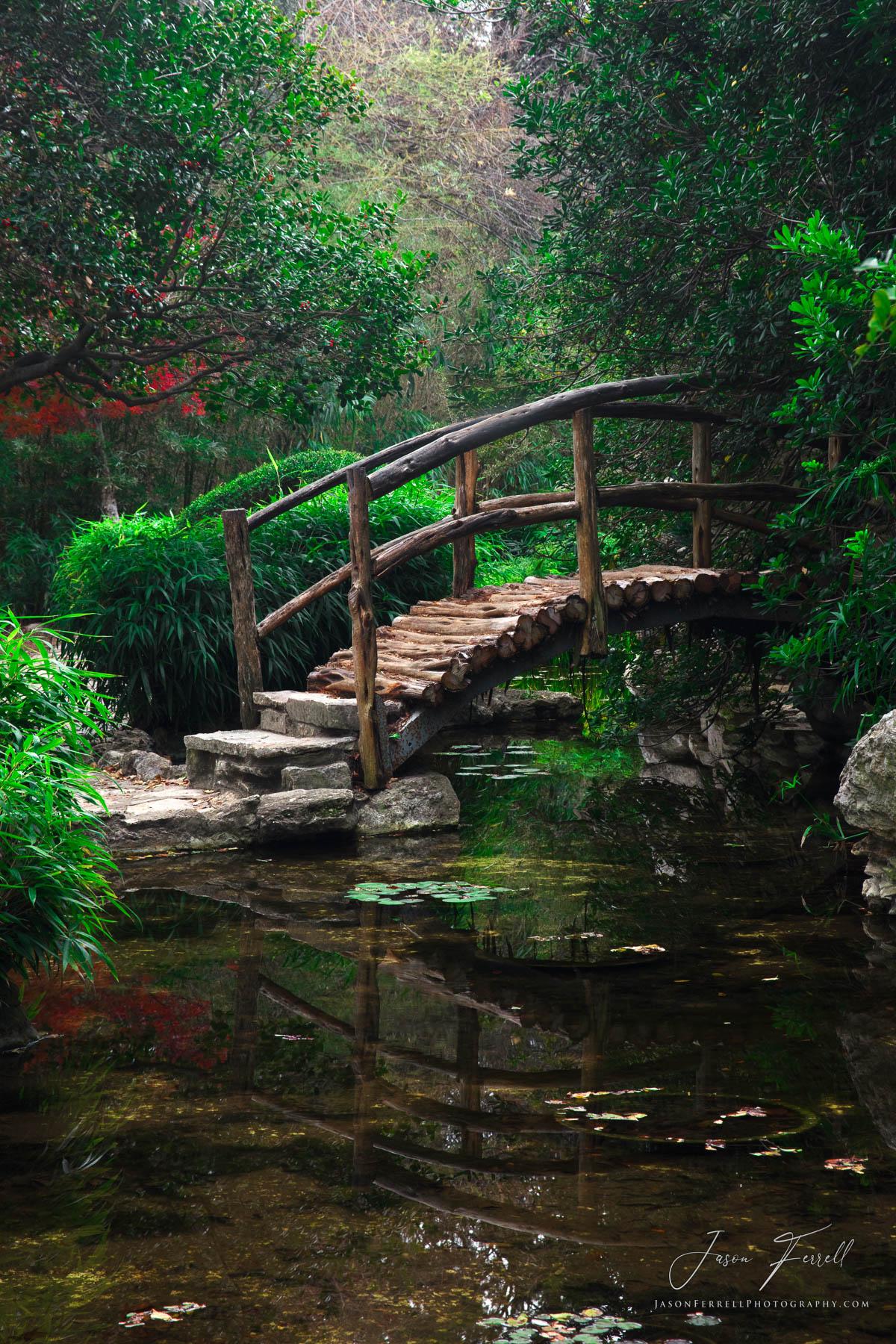 reflect, austin, texas, bridge, stream, river, water, zilker botanical garden, photo