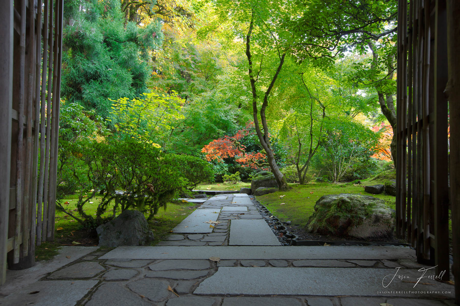 wander, portland japanese garden, oregon, plants, stone, photo
